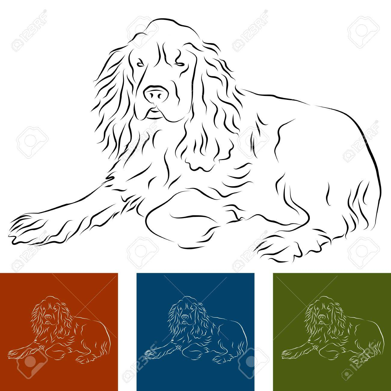 An Image Of A Cocker Spaniel Line Drawing Stock Vector 9538458