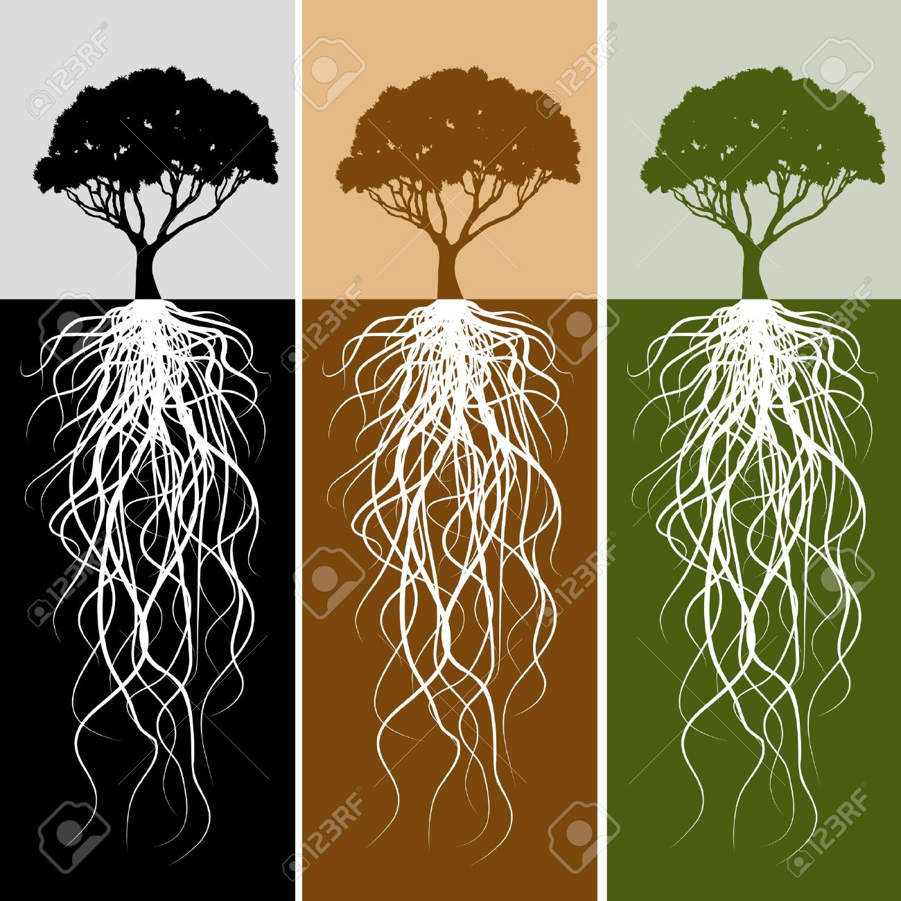 An Image Of A Vertical Tree Root Banner Set. Royalty Free Cliparts ...