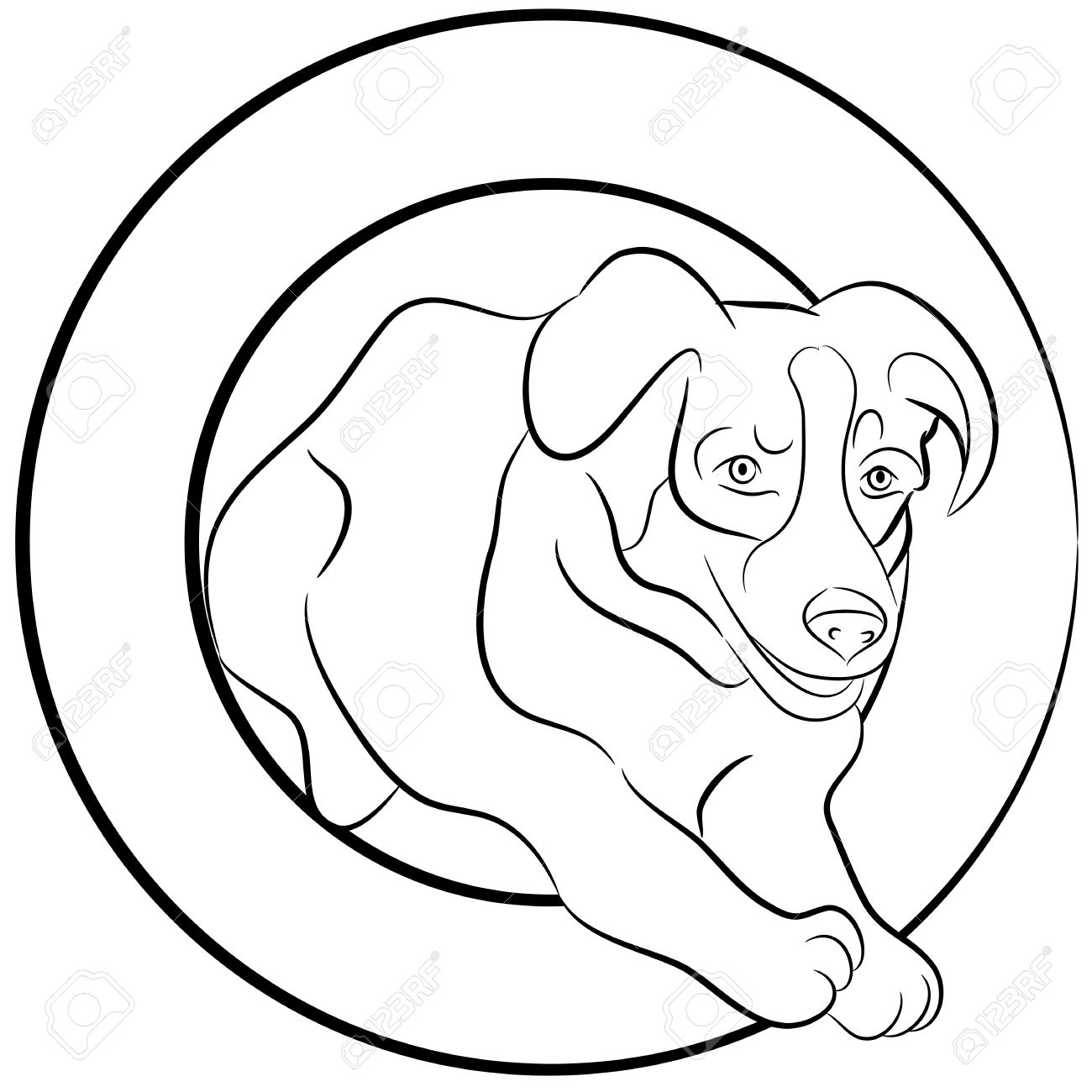 An Image Of A Border Collie Dog Jumping Through A Hoop Stock Vector  14575005 An Image