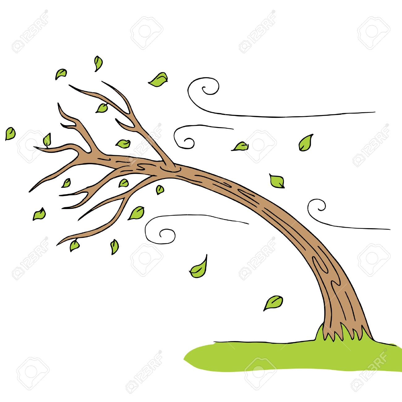a wind blown tree royalty free cliparts vectors and stock rh 123rf com clipart window cleaning clipart windows 10 download