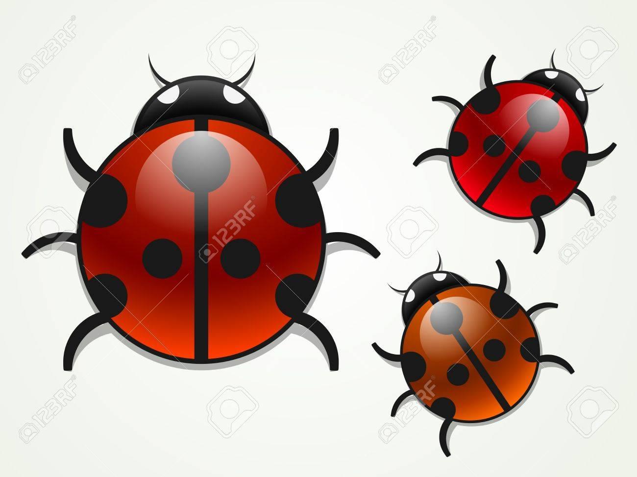 multicolored ladybugs Stock Vector - 9905556