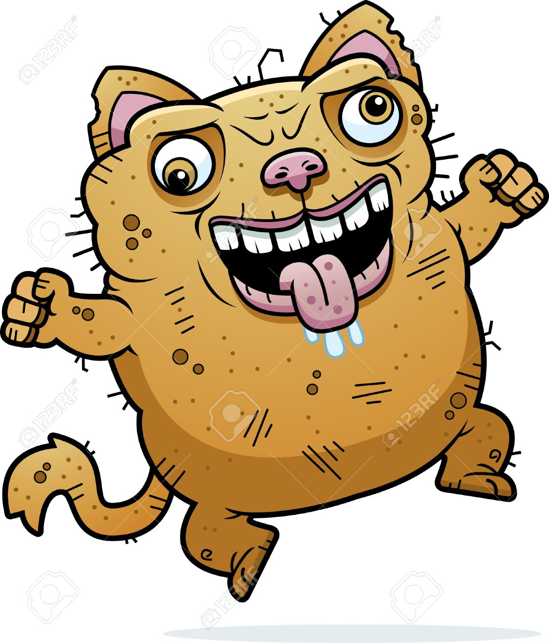 A Cartoon Illustration Of An Ugly Cat Looking Crazy Royalty Free Cliparts Vectors And Stock Illustration Image 42751538