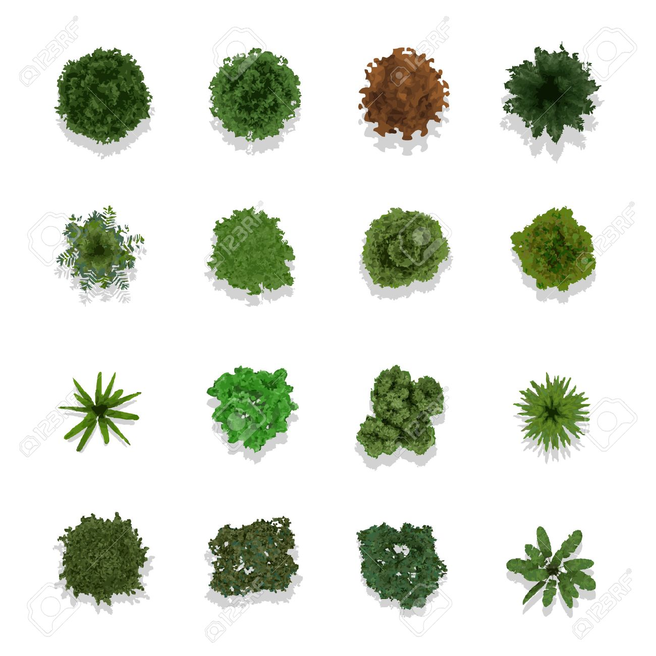 Trees top view for landscape vector illustration Stock Vector - 43216656