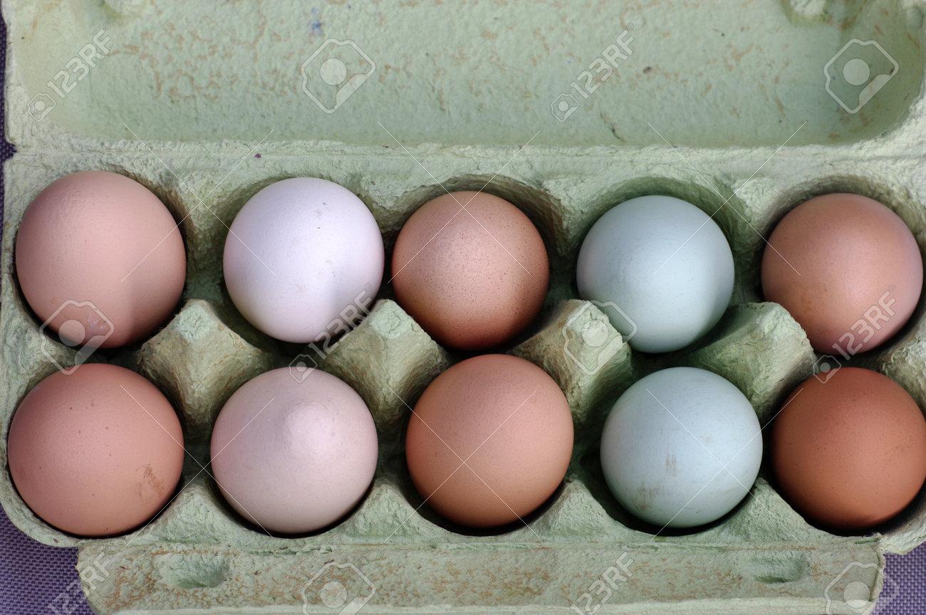 ten chicken eggs in various colors in an egg carton - 162869810
