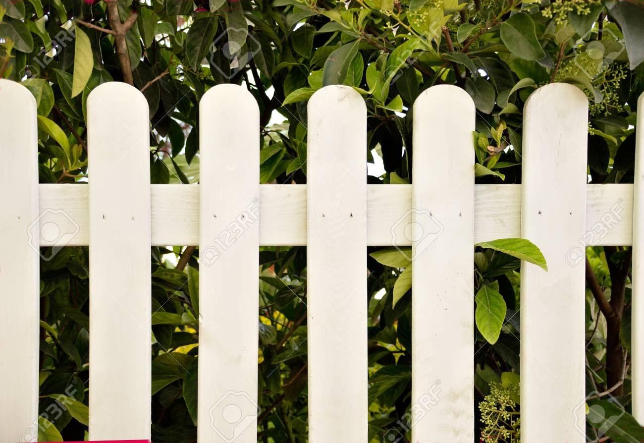 close up ein holzzaun weiß lizenzfreie fotos, bilder und stock