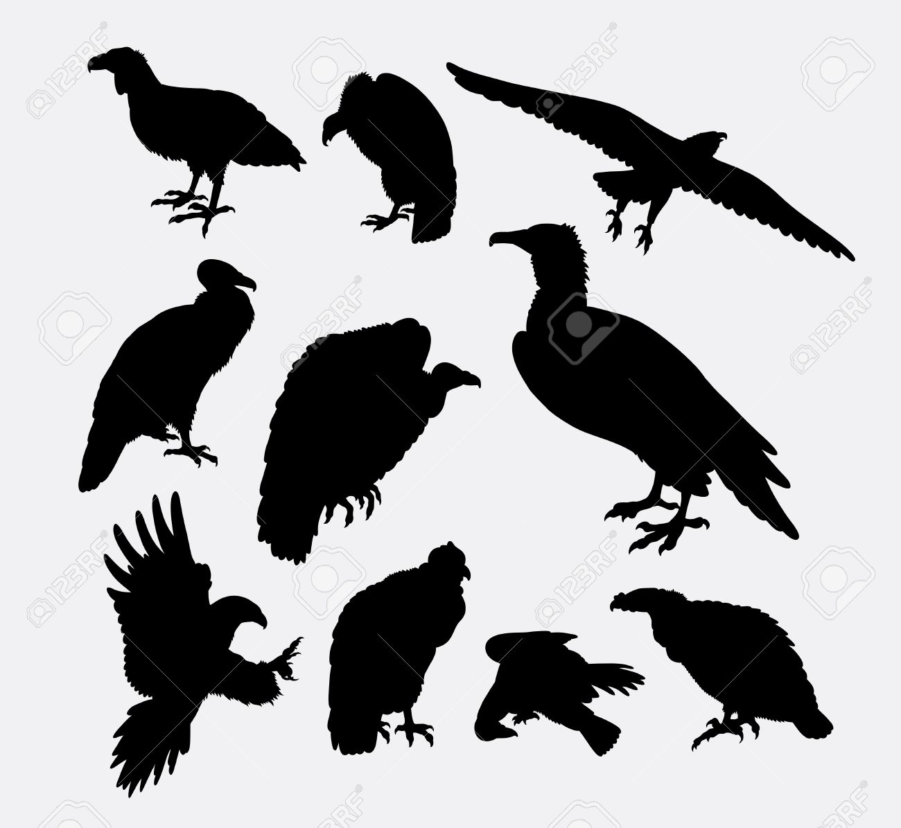 Condor vulture and eagle bird silhouette good use for symbol condor vulture and eagle bird silhouette good use for symbol logo biocorpaavc Gallery