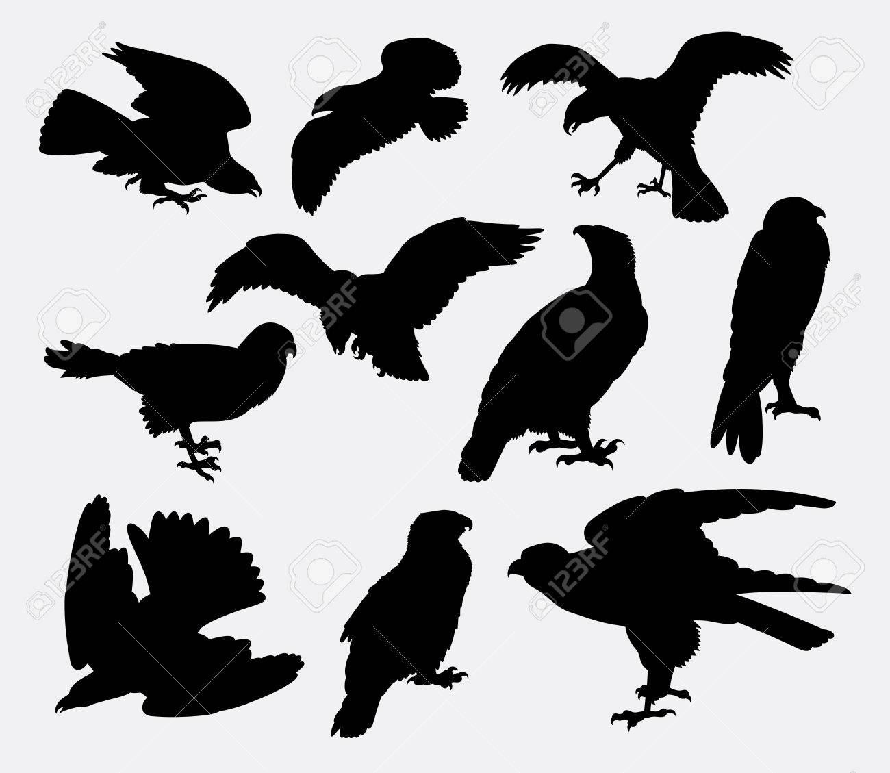 Falcon Eagle Hawk Bird Silhouette Good Use For Symbol Logo