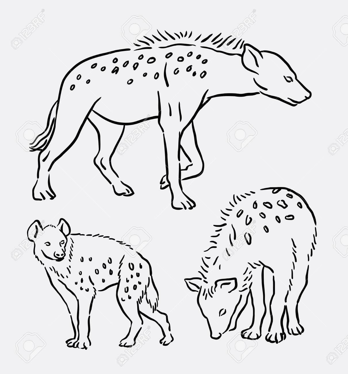 hyena wild animal hand drawing good use for symbol logo web icon