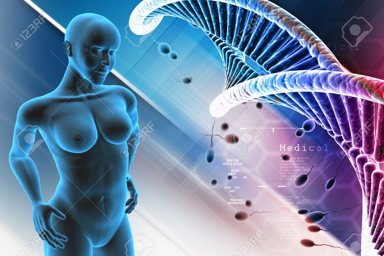 Human Female Anatomy With DNA And Sperm In Color Background Stock ...