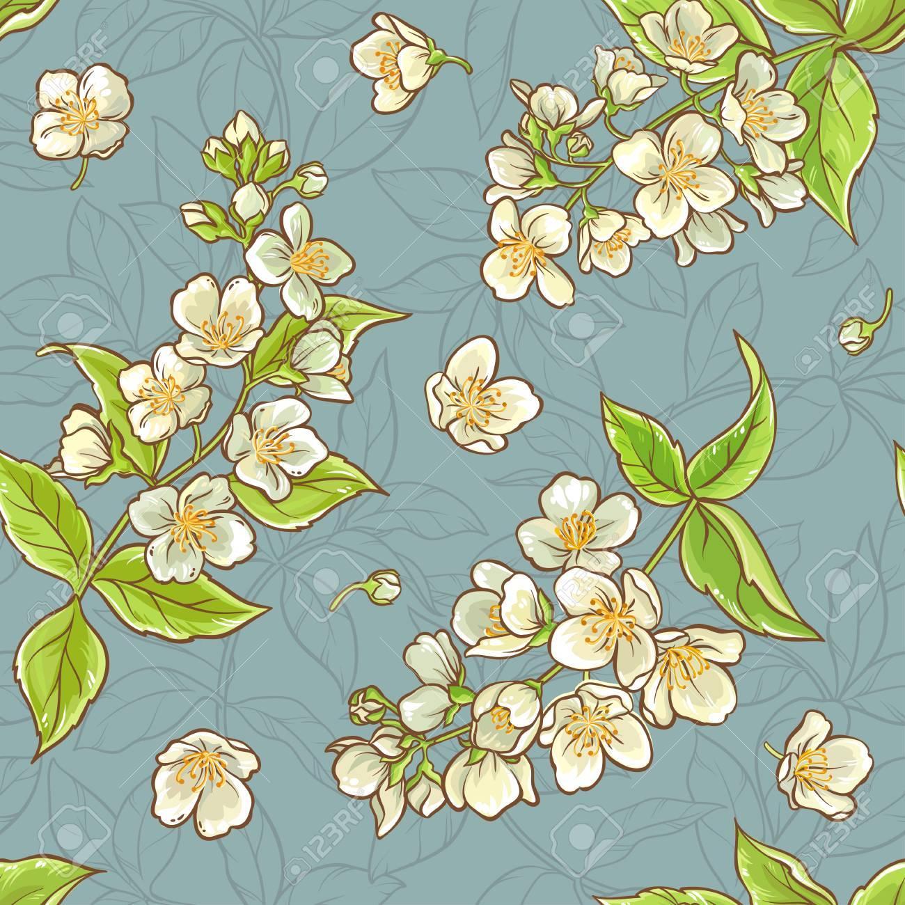 Jasmine flowers color vector seamless pattern on blue background jasmine flowers color vector seamless pattern on blue background stock vector 67870526 izmirmasajfo