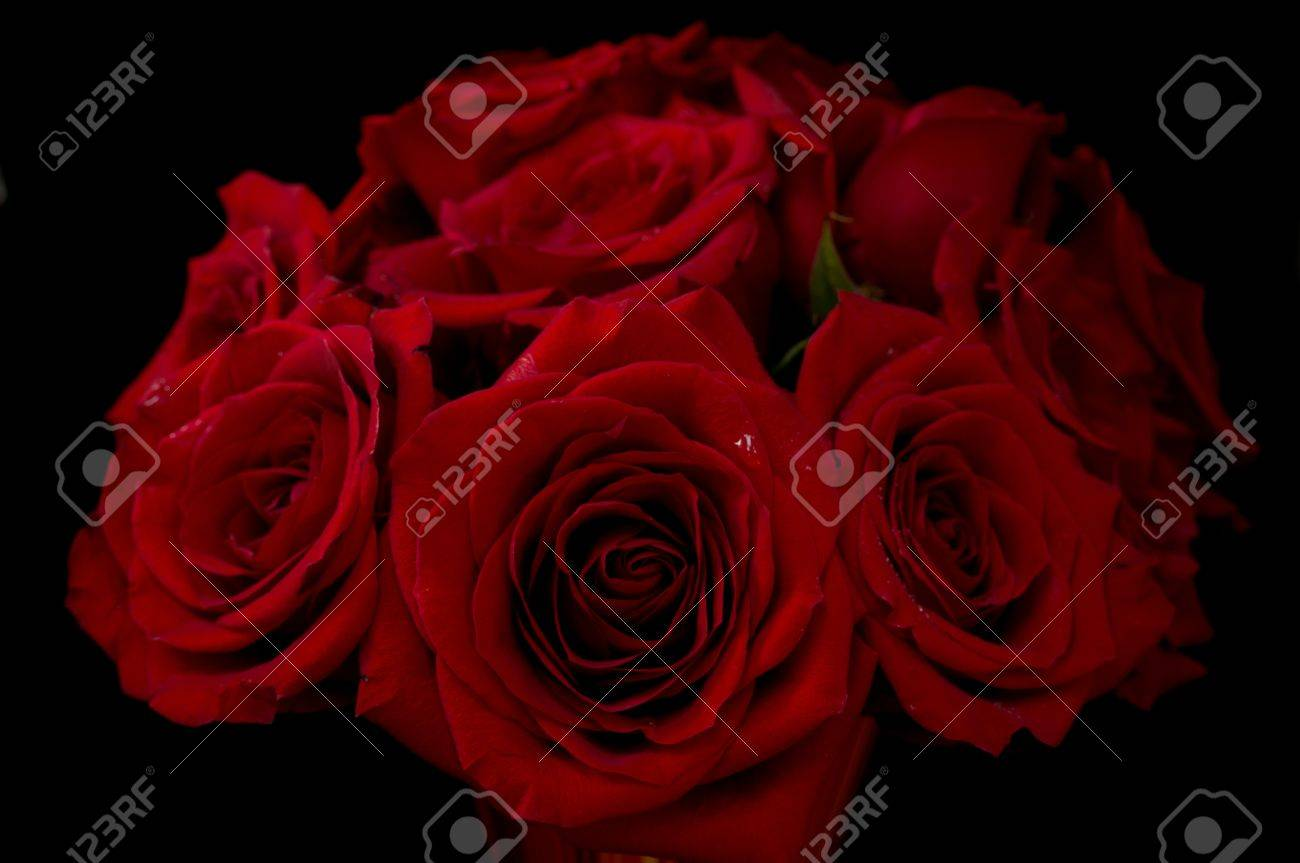 Bouquet of beautiful red roses on black background stock photo bouquet of beautiful red roses on black background stock photo 13947045 izmirmasajfo