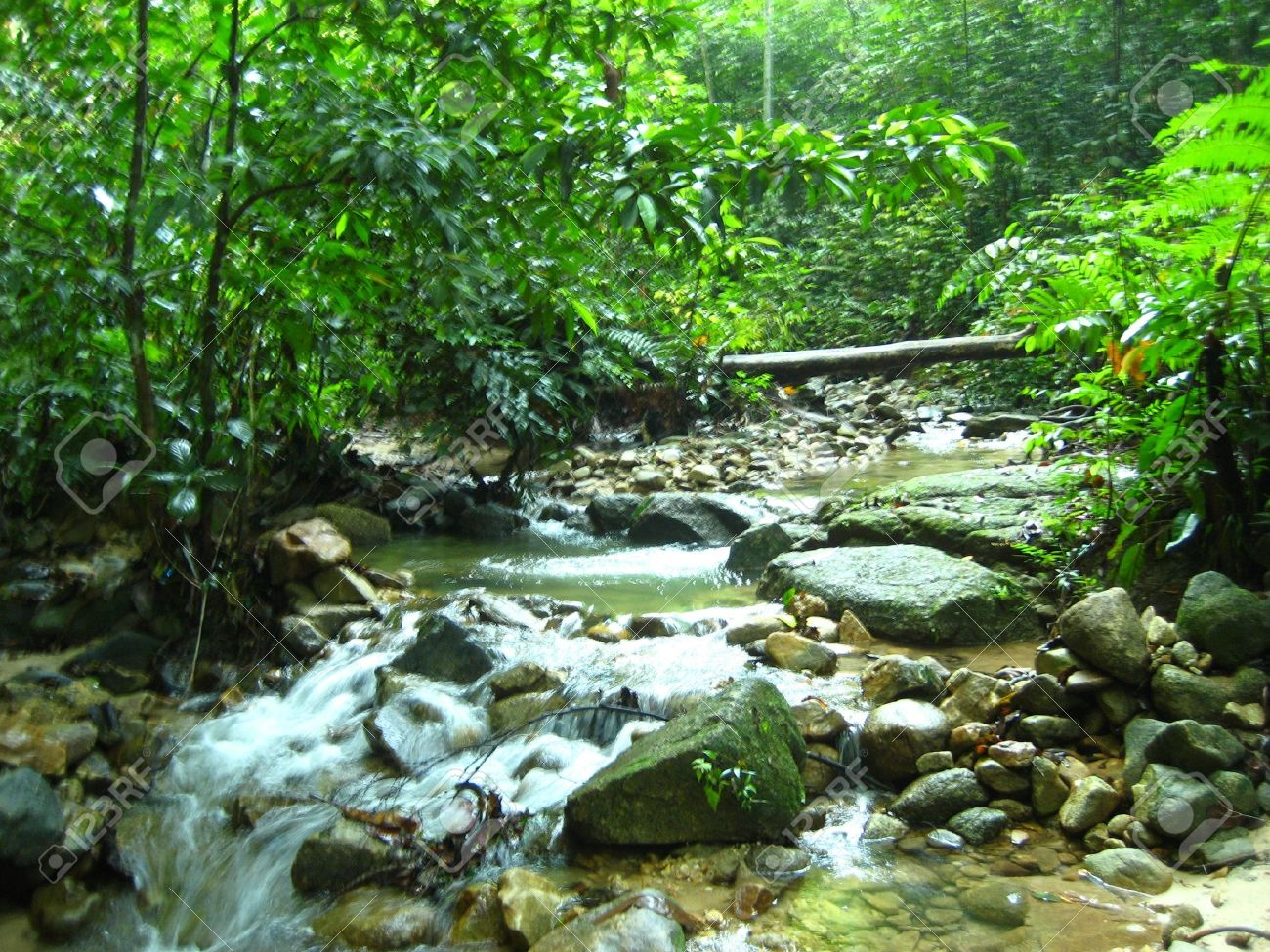 Waterfall Malaysia Selangor on Selangor Malaysia