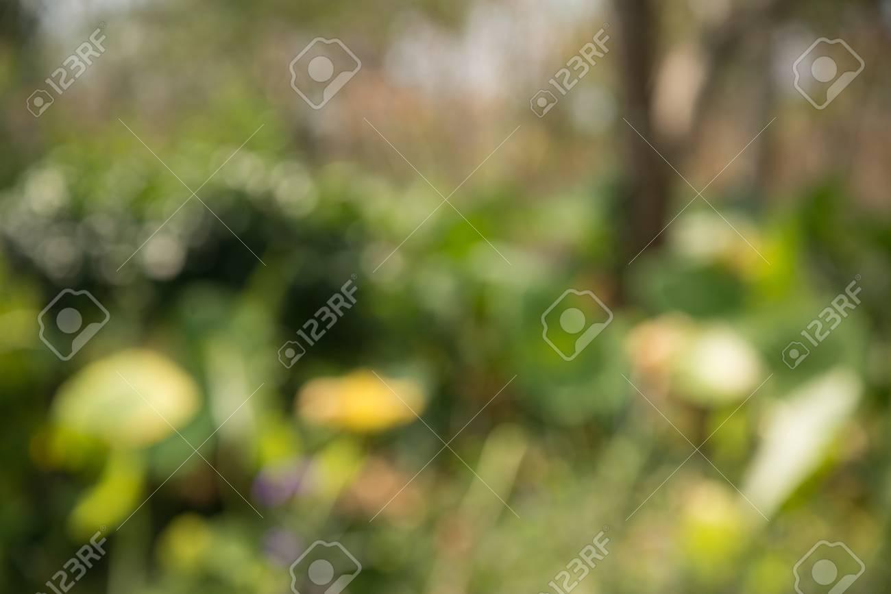blurred green nature background (blur wallpaper) Stock Photo - 36984547