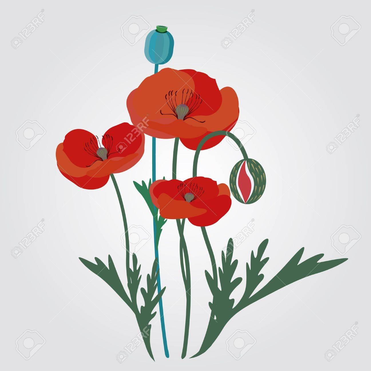 Red poppy flowers illustration royalty free cliparts vectors and red poppy flowers illustration stock vector 18568558 mightylinksfo