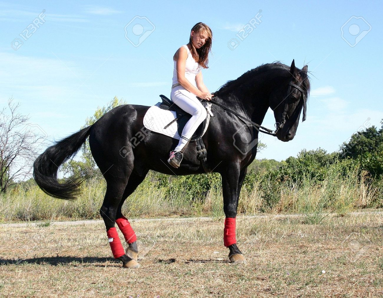Riding Woman And Black Stallion Stock Photo Picture And Royalty Free Image Image 663870