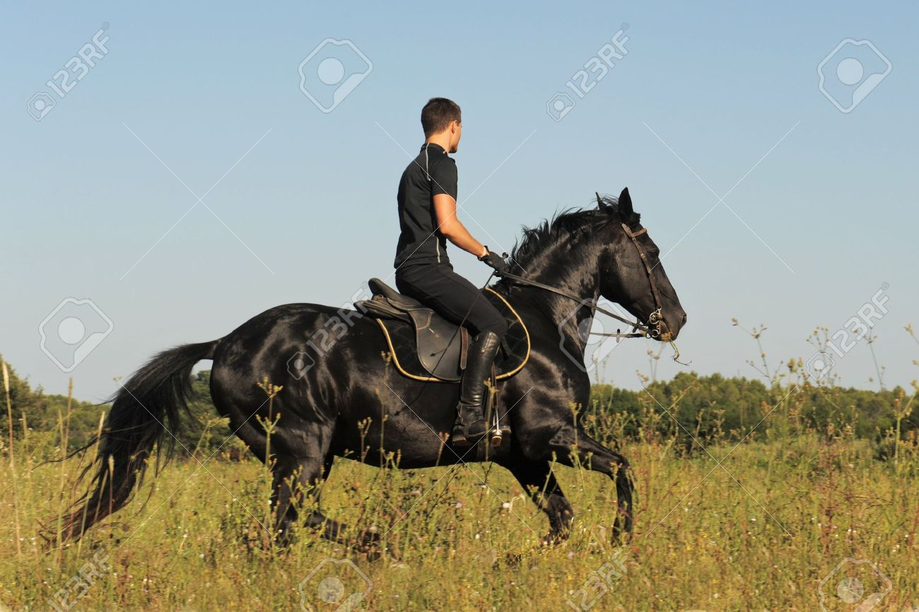 young man and his black stallion in a field Stock Photo - 9998824