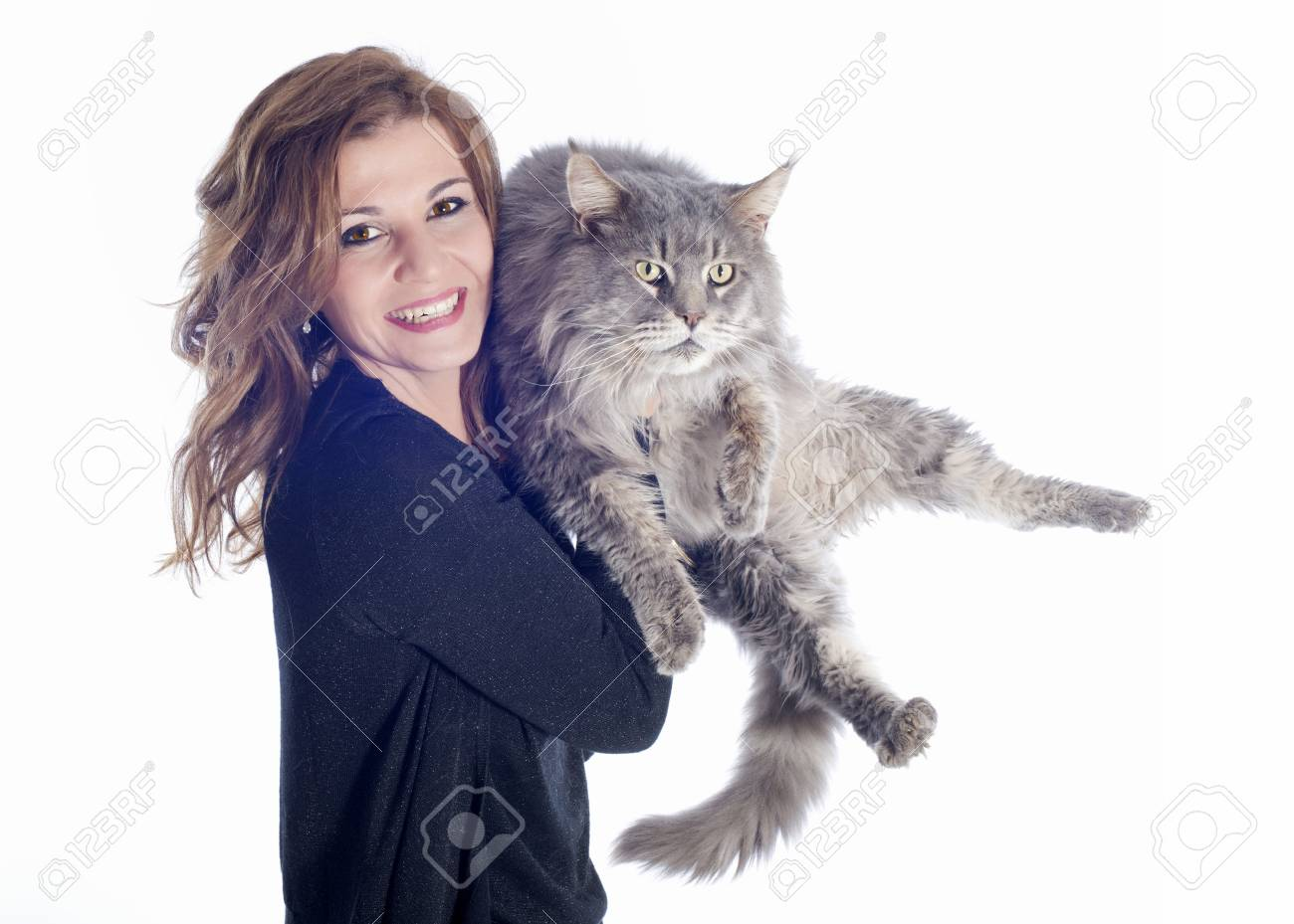 portrait of a purebred  maine coon cat and woman on a white background Stock Photo - 16883320