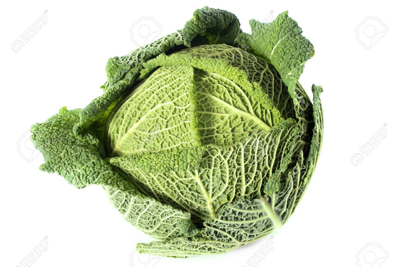 fresh cabbage in front of white background Stock Photo - 17333379