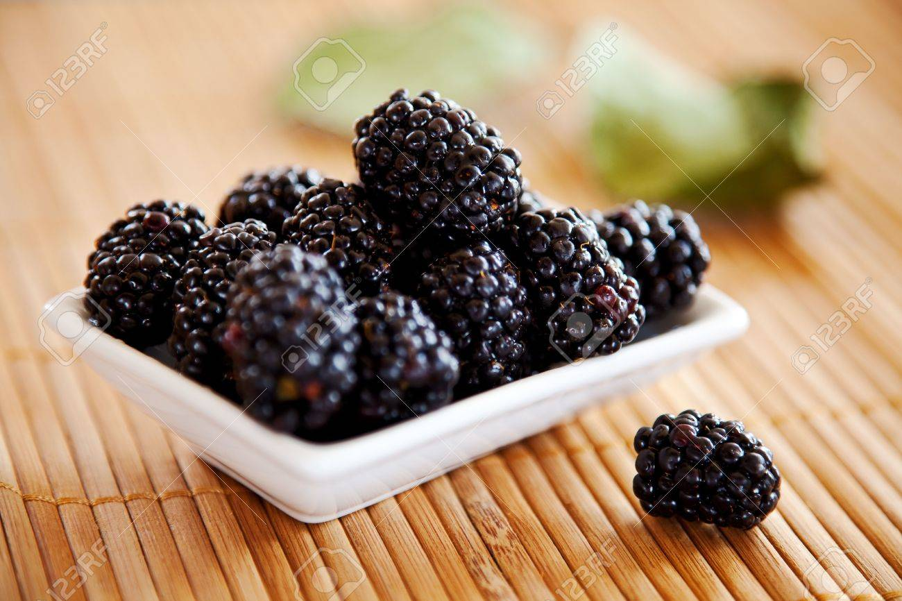 blackberries isolated on a bamboo mat background - 5368532