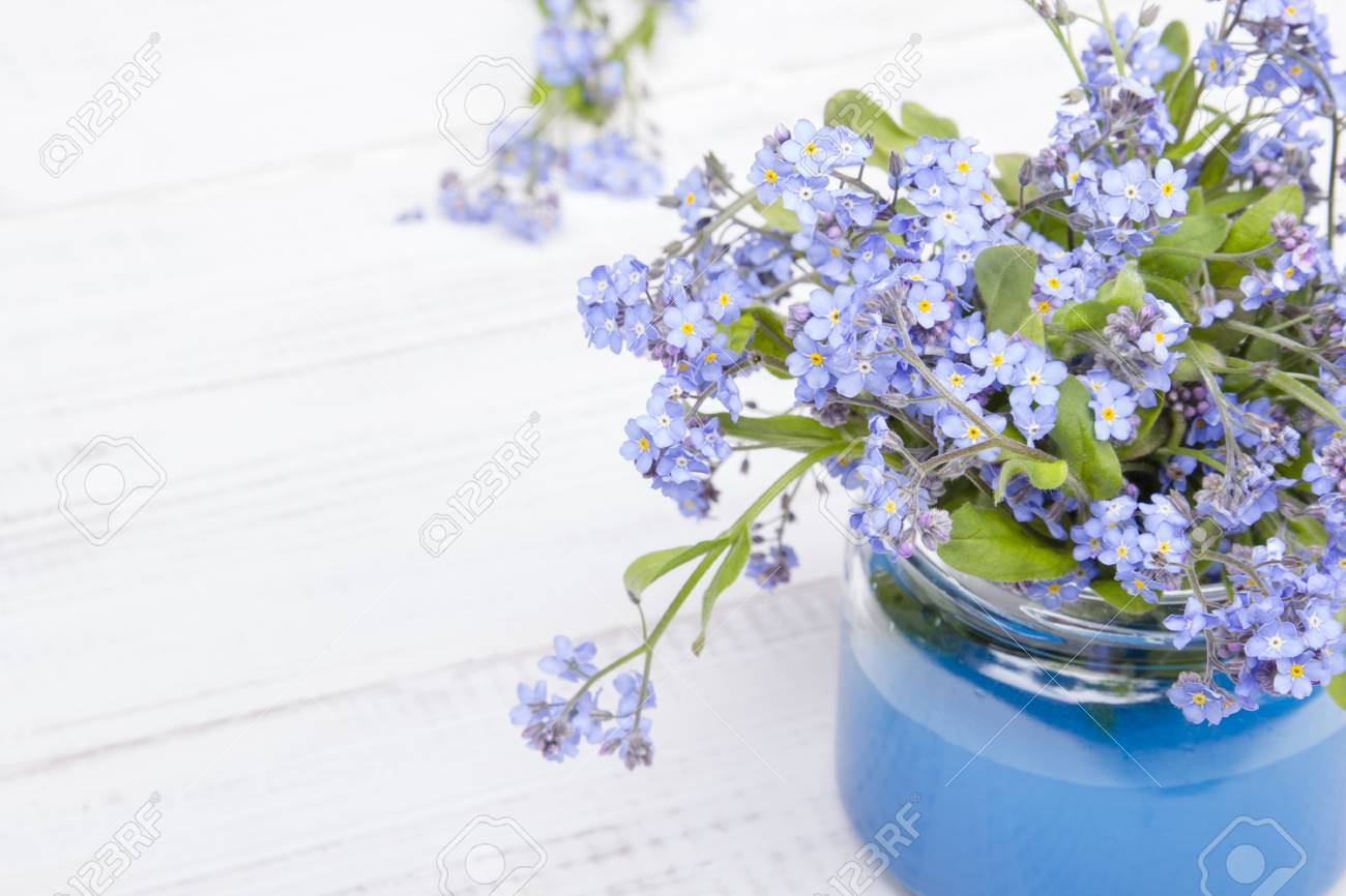 Small Blue Flowers In A Jar On A White Wooden Background Stock Photo Picture And Royalty Free Image Image 66918543