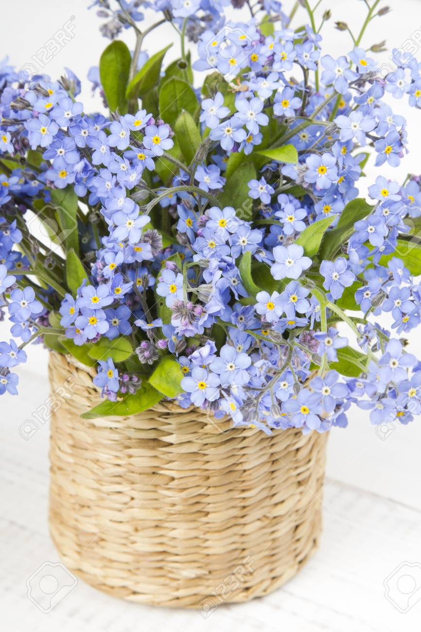 Blue Flowers Bouquet On White Wooden Background Stock Photo, Picture ...