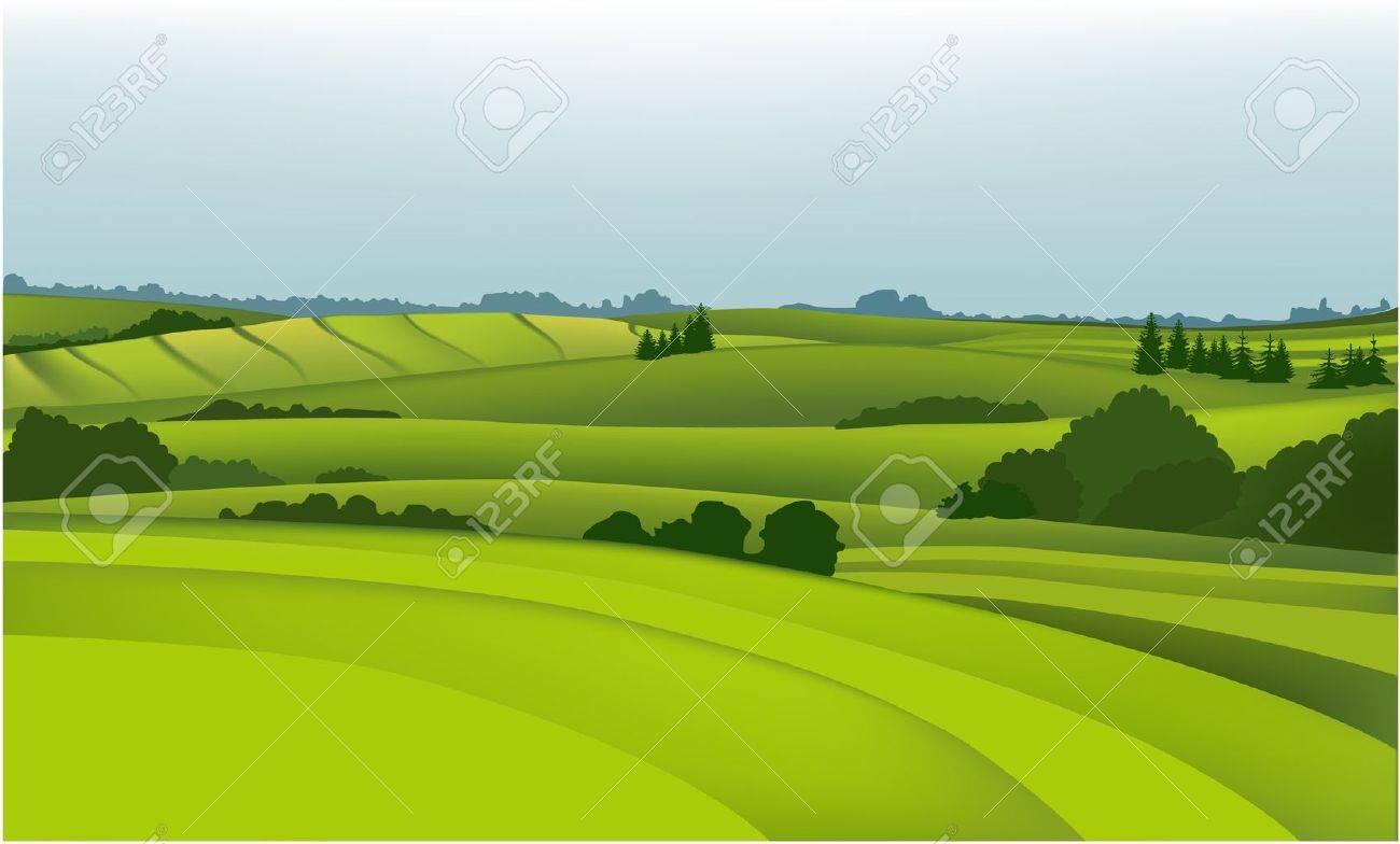 Rural landscape Stock Vector - 14477237