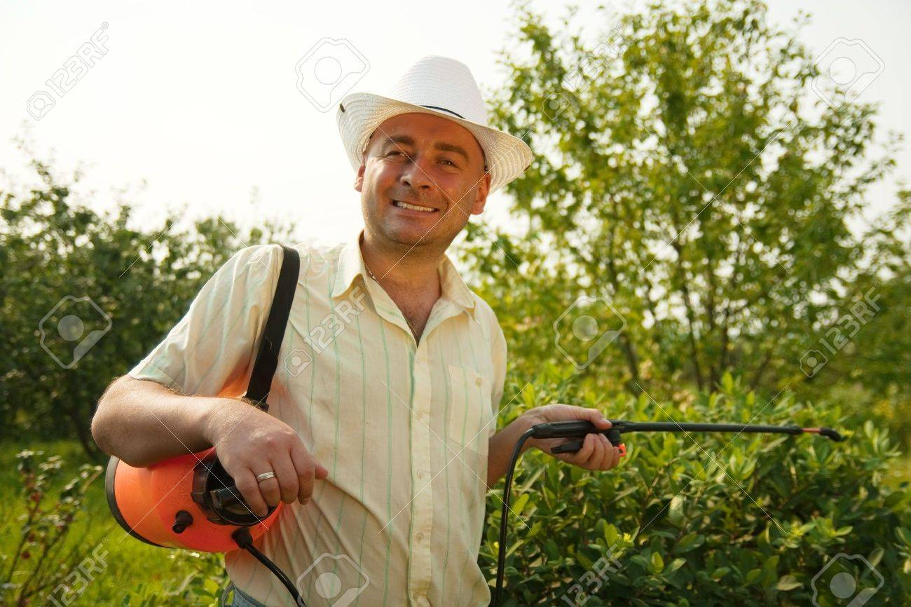 working man with garden spray against summer time in garden Stock Photo - 8143301