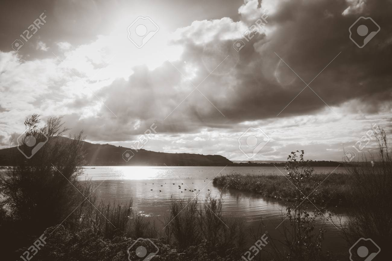 Rotorua lake view new zealand black and white picture stock photo 91875137