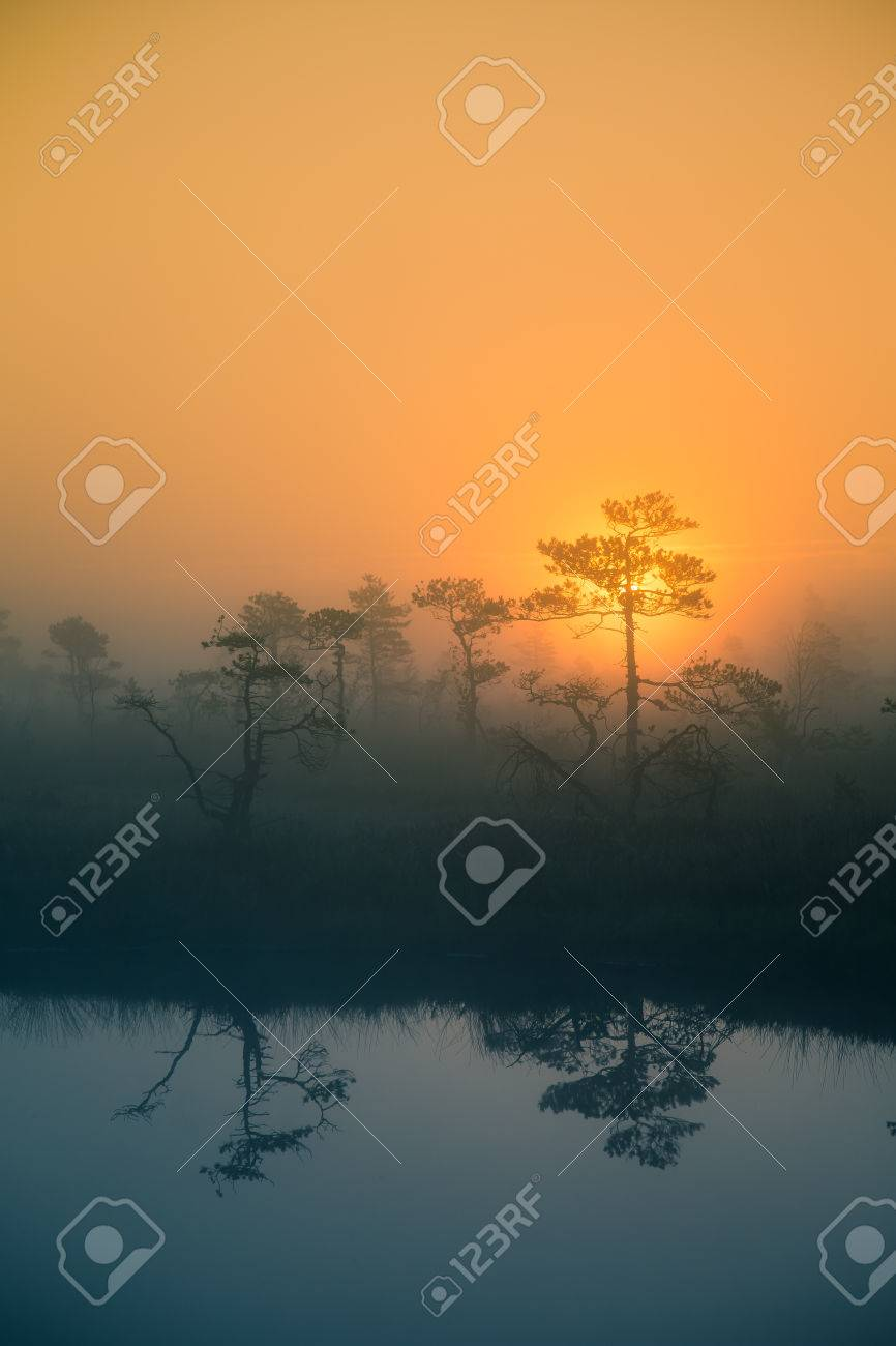 a beautiful, dreamy morning scenery of sun rising in a misty.. stock