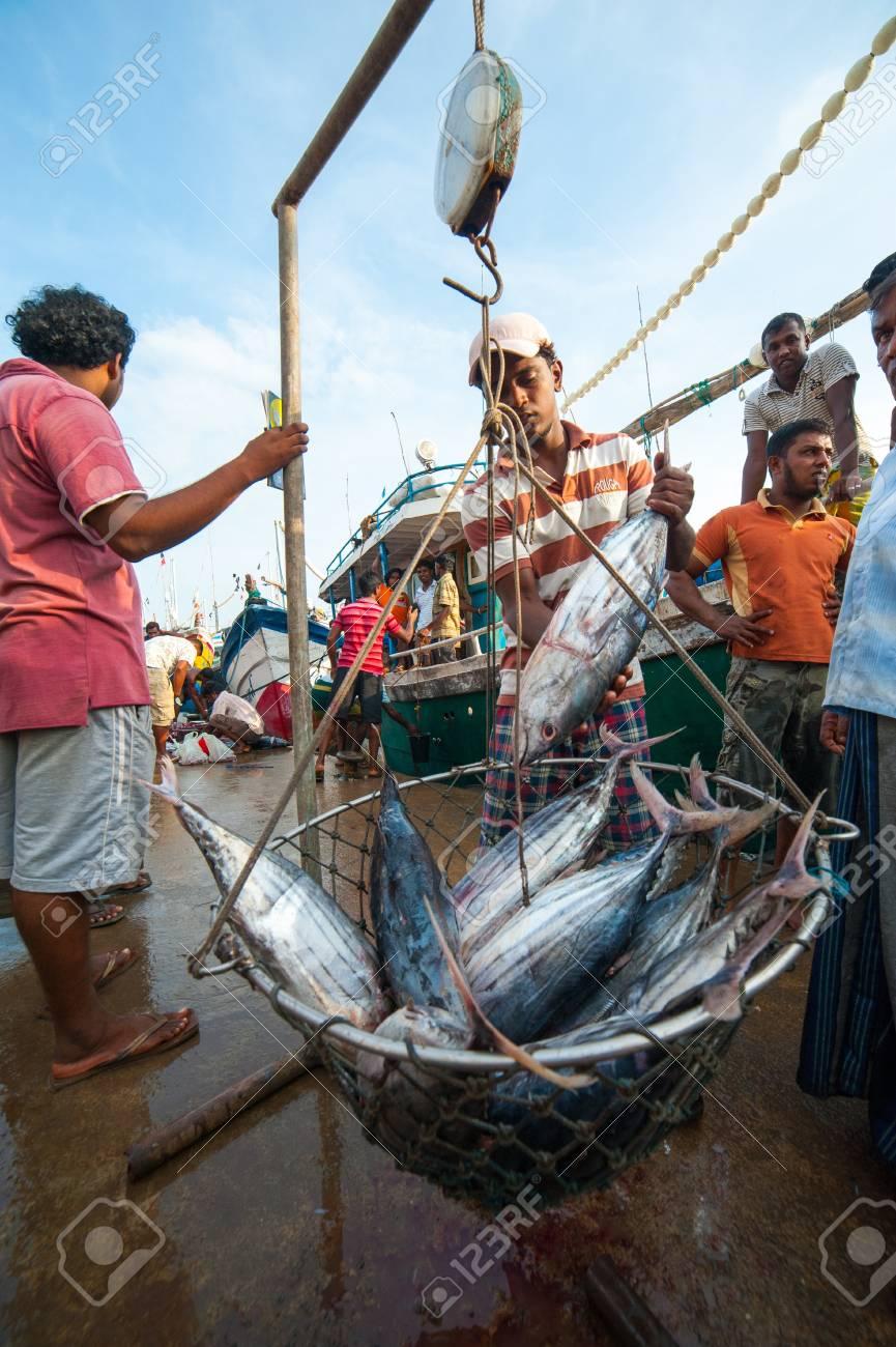 MIRISSA, SRI LANKA - APRIL 10: Fishermen returned to their work in Mirissa, Sri Lanka on April 10, 2012. In 2008 USAID finalize a $12.7 million repair of fishing harbor affected by tsunami in Mirissa. Stock Photo - 13714902