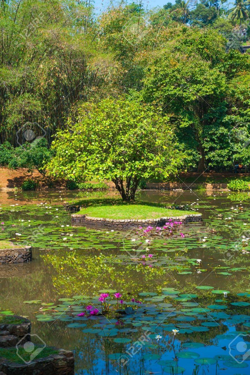 Botanical Garden Landscape In Peradeniya Kandy Sri Lanka Stock