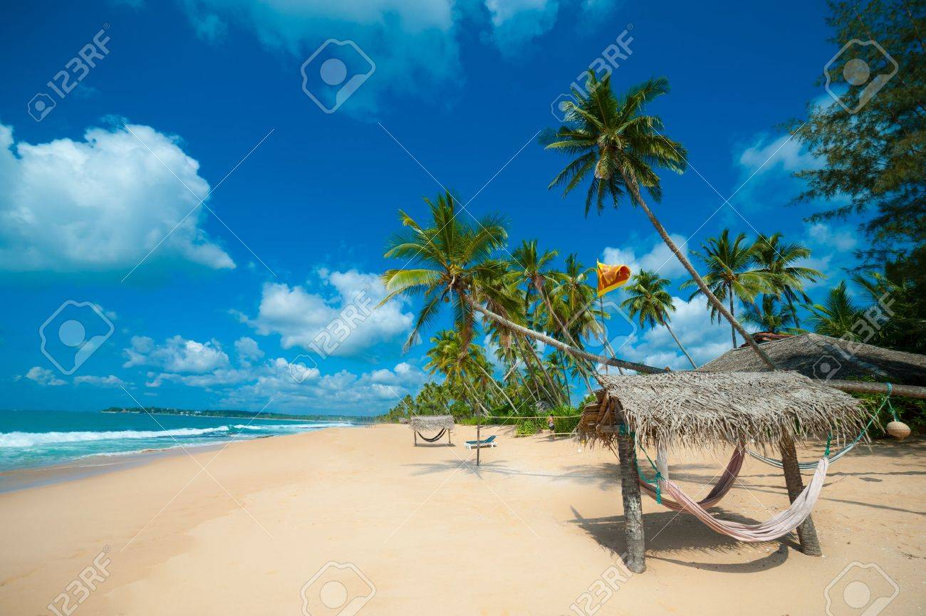 Tropical beach in Sri Lanka - 14813463