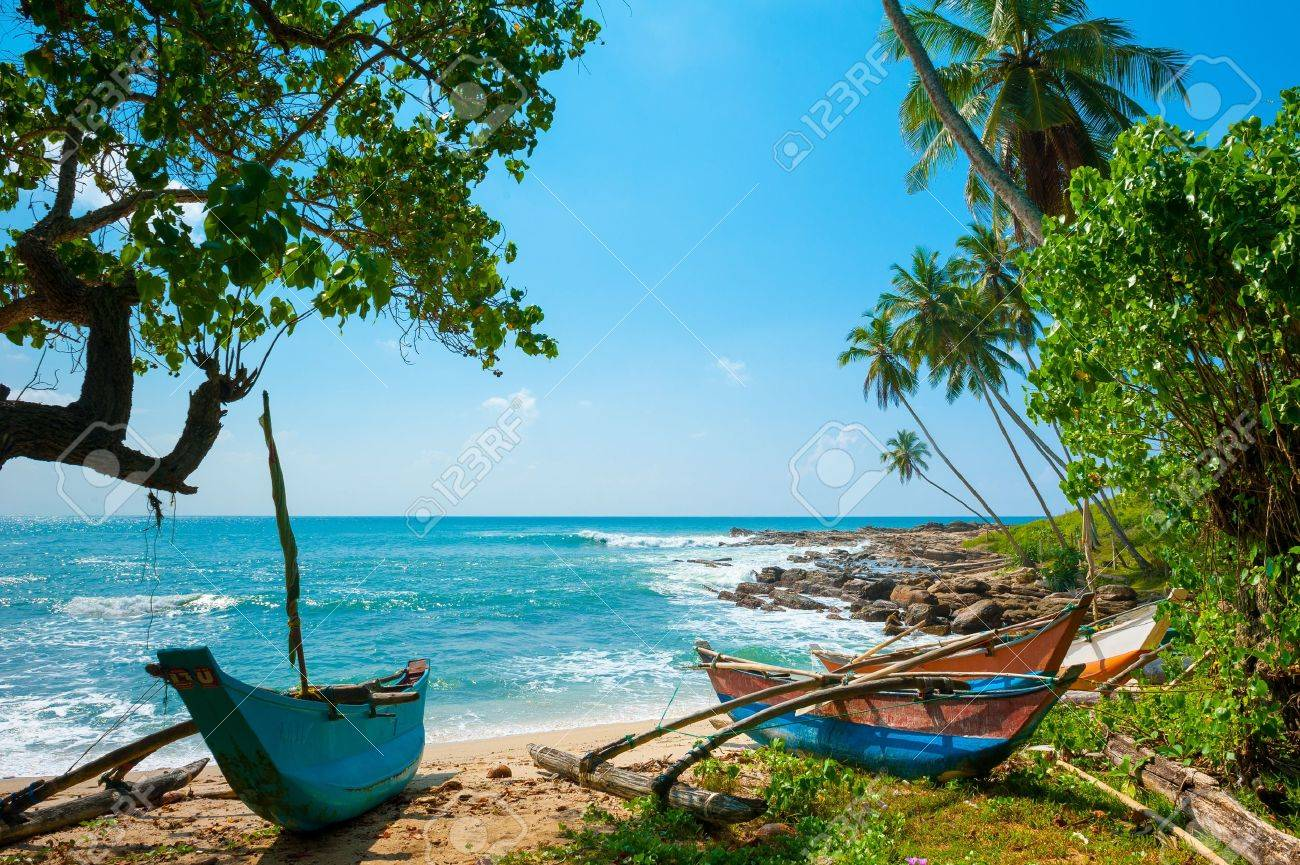 Untouched tropical beach with palms and fishing boats in Sri-Lanka - 14920626