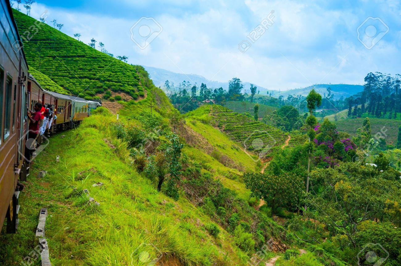 Travel by train through scenic mountain landscape in Nuwarelia, Sri Lanka - 14920581