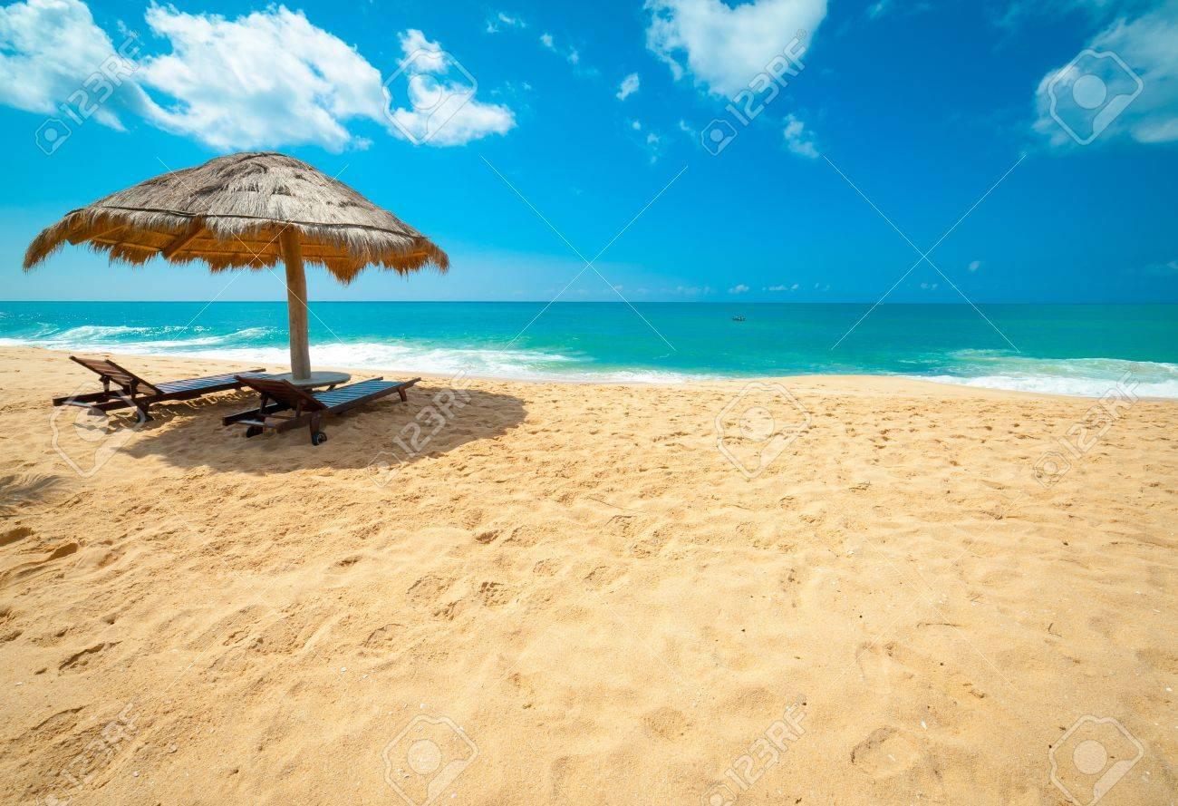 Tropical beach in Sri Lanka - 16684672