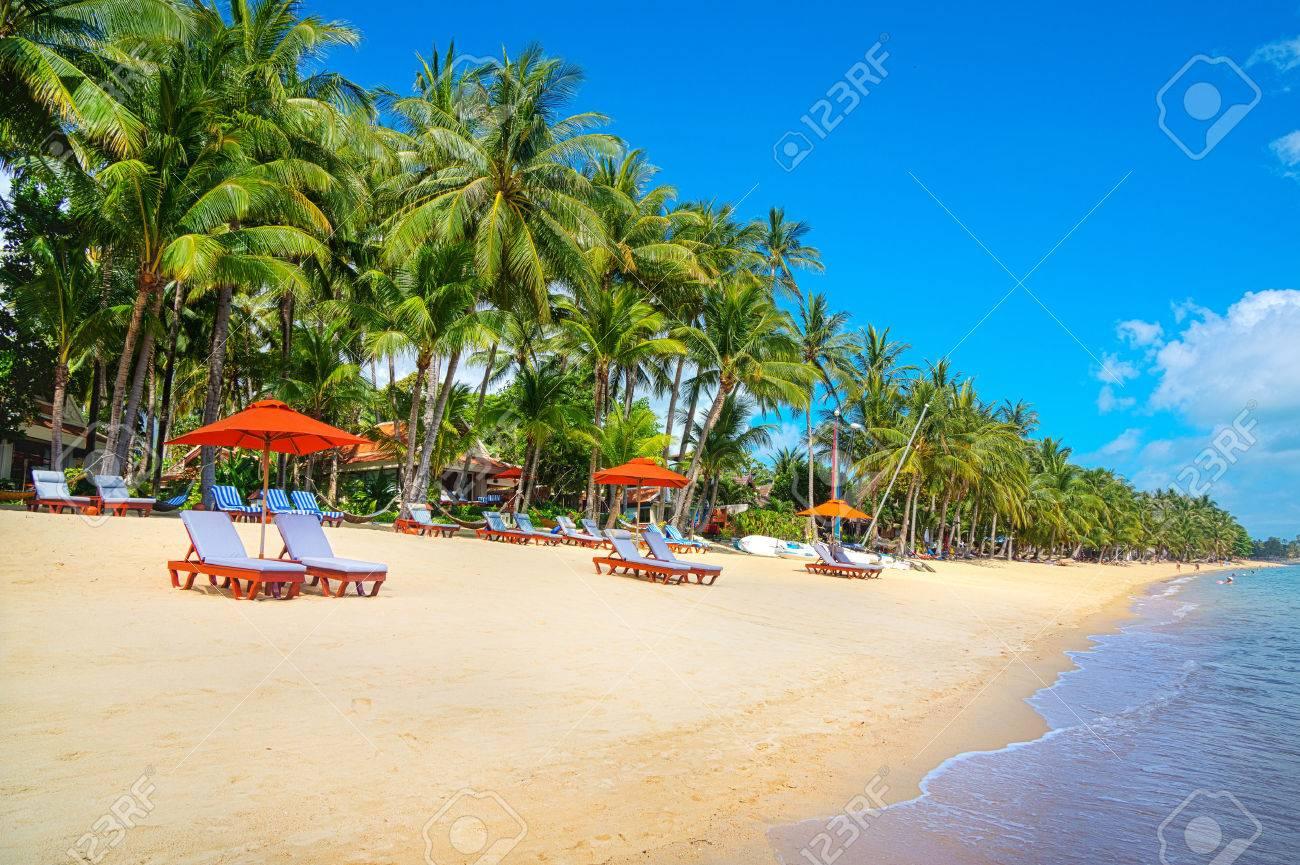 Tropical resort panorama in Koh Samui, Thailand - 28350693
