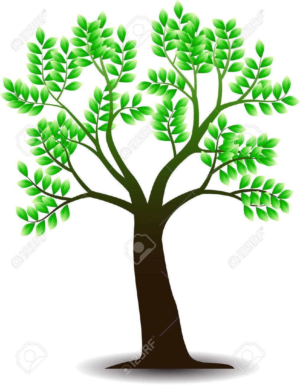 Tree Illustration Stock Vector - 4719026