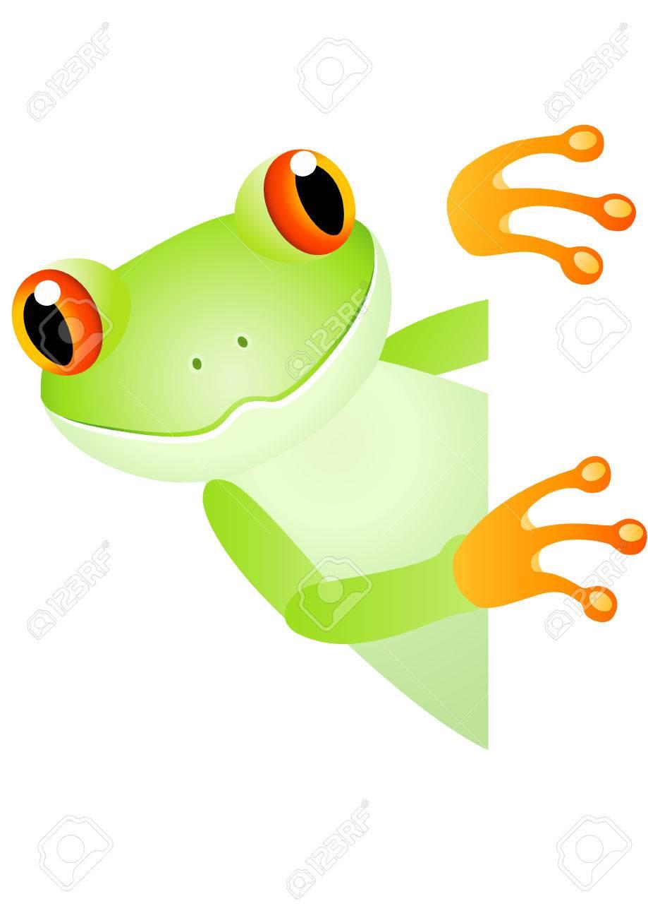 Cute frog Stock Vector - 6856259