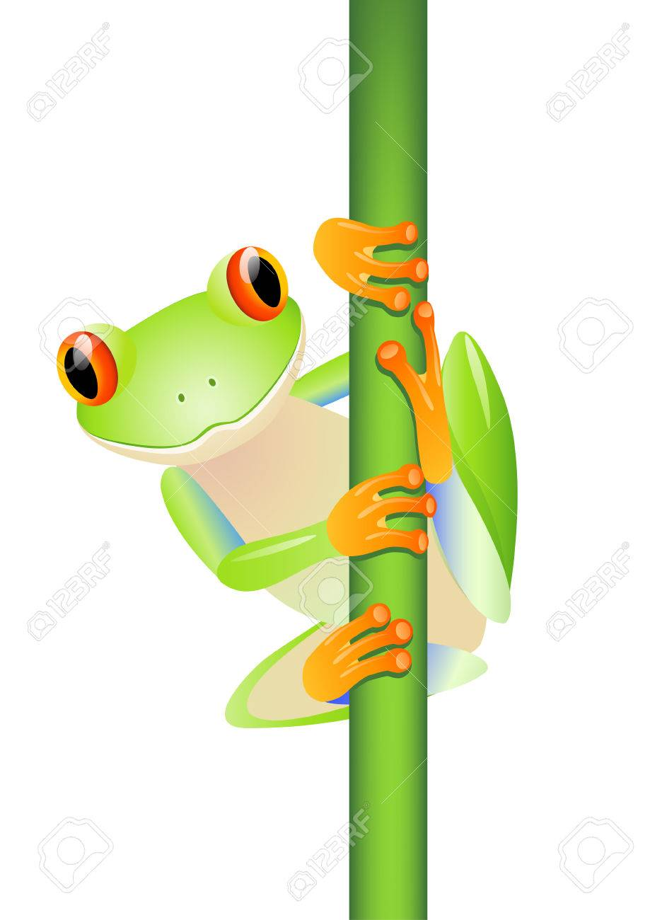 A cute green frog Stock Vector - 6856262