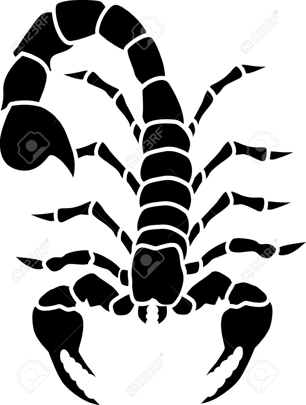 Desert Scorpion Drawing