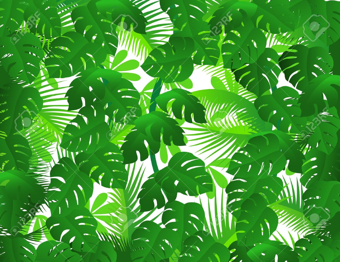 Green forest background - 9569156