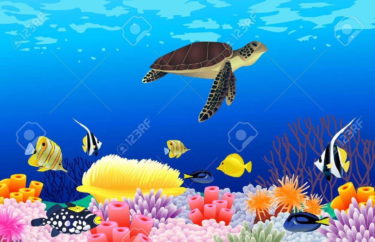 vector illustration of sea life royalty free cliparts vectors