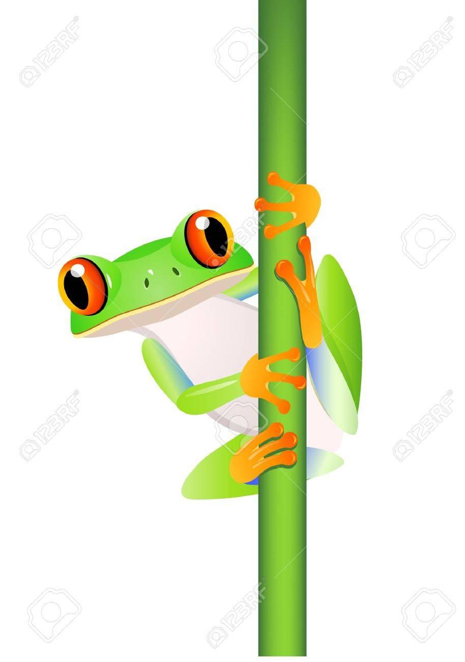 Frog Cartoon Royalty Free Cliparts Vectors And Stock Illustration Image 12150907 Myart@artforkidshub.commail us your art:art for kids hubp.o. frog cartoon
