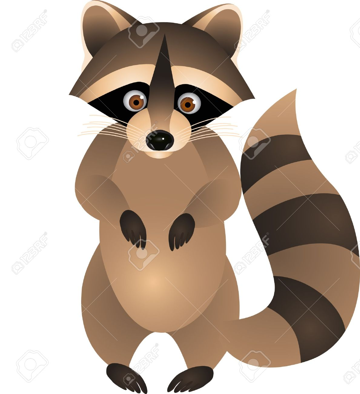 raccoon art  Raccoon Cartoon  Raccoon Clip Art