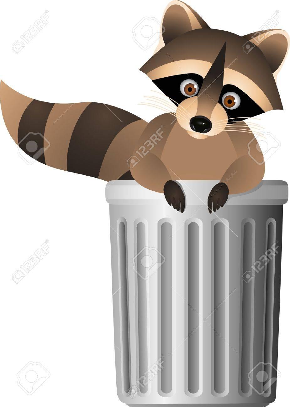 Raccoon inside garbage can - 13349870