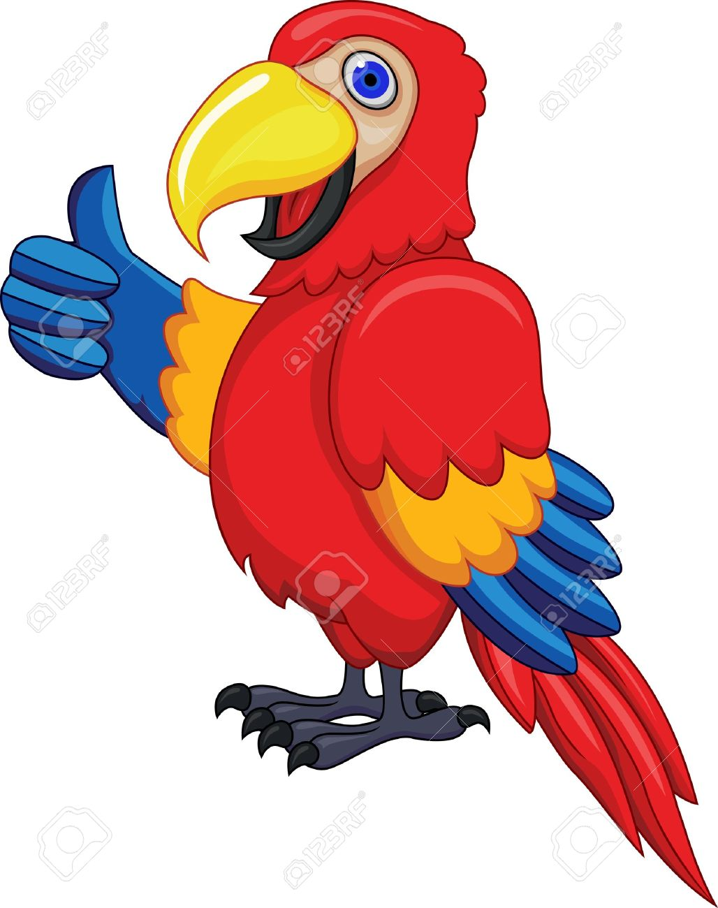 Funny Parrot Stock Vector - 13281574