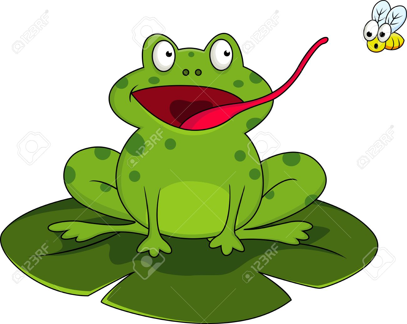Frog With Fly Stock Vector - 13281553