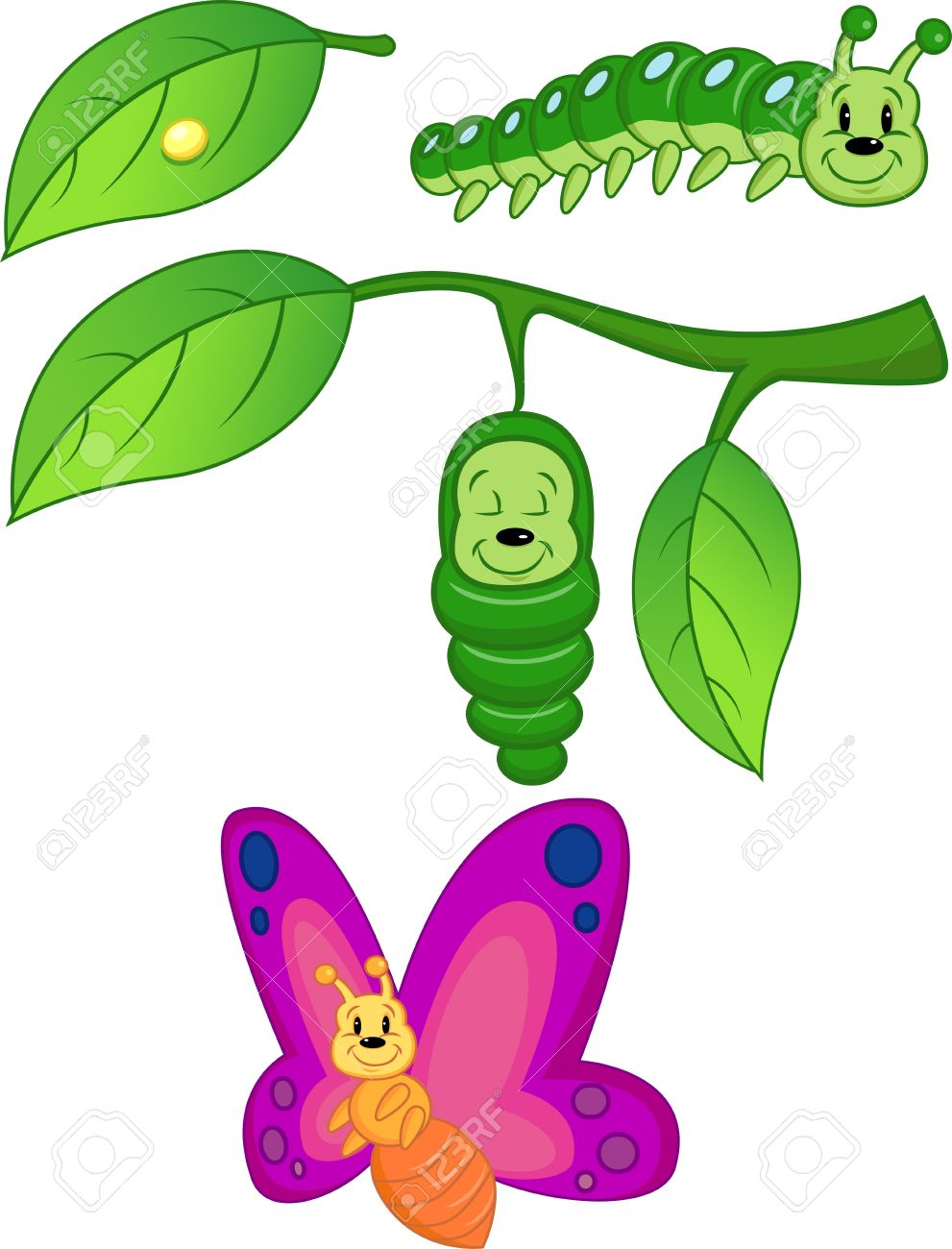 Cat Caterpillar To Butterfly Cartoon Images