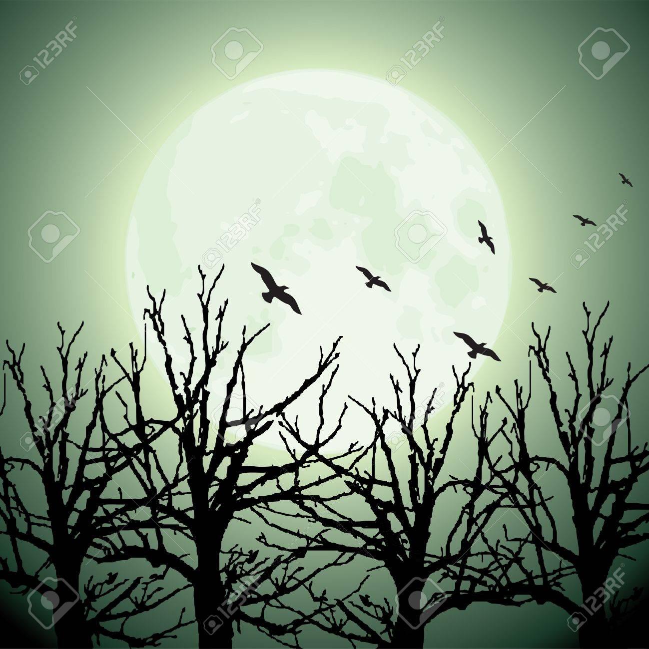 vector big moon, trees and birds Stock Vector - 11083766