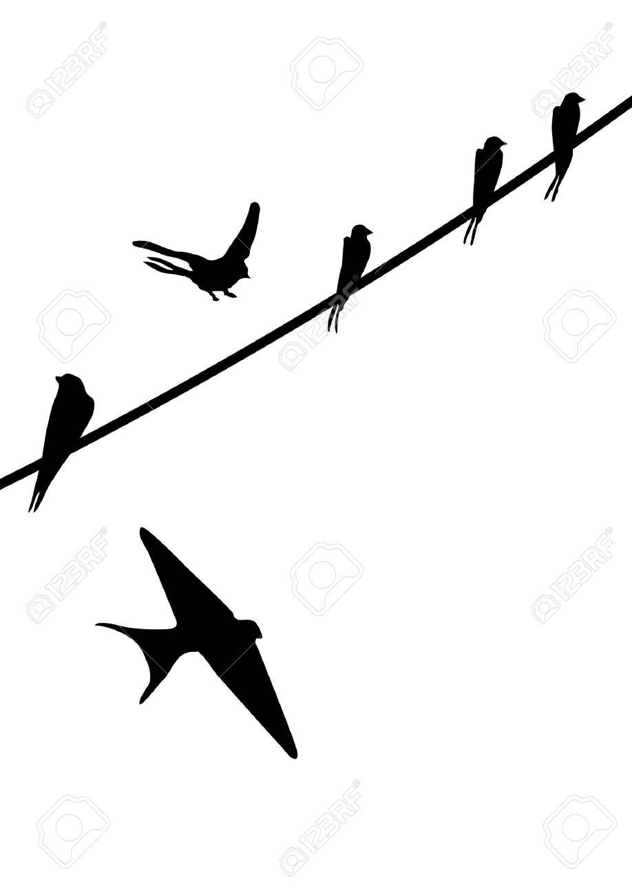 Painted silhouettes of birds sitting on wires Stock Vector - 10161874